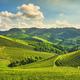 Langhe vineyards sunset panorama, Serralunga Alba, Piedmont, Italy Europe. - PhotoDune Item for Sale