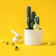 Creative layout Easter background. Cactus - PhotoDune Item for Sale