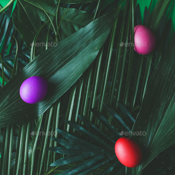 Creative tropical layout made of green leaves with eggs. Flat lay.Easter concept - Stock Photo - Images