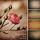 Fine Art Texture Photoshop Overlays 5