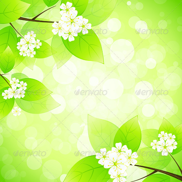 Green Background - Flowers & Plants Nature