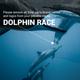 Scuba Diving Video Promotion Slideshow