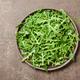 Fresh rucola leaves on ceramic plate - PhotoDune Item for Sale