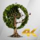 Earth Globe Tree (4K) - VideoHive Item for Sale