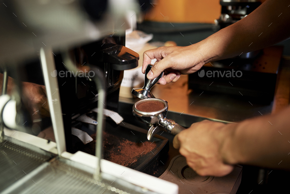Barista tamping arabica grounds - Stock Photo - Images
