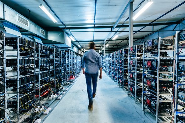 IT business owner walking in high tech data center full of servers and computers. - Stock Photo - Images