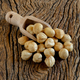 peeled hazelnuts typical of Avellino Italian city - PhotoDune Item for Sale