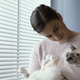 Woman holding her beautiful cat - PhotoDune Item for Sale