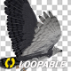 Harpy Eagle - Flying Loop - Back Angle - VideoHive Item for Sale
