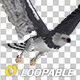 Harpy Eagle - Flying Loop - Side Angle - VideoHive Item for Sale