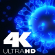 3D background with coronavirus 4K - VideoHive Item for Sale