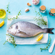 Dorado Fish with Cooking Ingredients on a Parchment Paper. Blue Stone Background. Top view. - PhotoDune Item for Sale