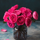 Peony Roses Bunch in Glass Vase. Blue stone Background. Copy Space. - PhotoDune Item for Sale