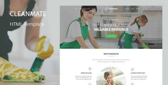 CleanMate - Cleaning Company Maid Gardening Template by QuanticaLabs