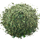 Dried herbs basil pile, paths - PhotoDune Item for Sale