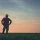 Rear view of satisfied farmer in wheatgrass field - PhotoDune Item for Sale