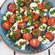 Salad of roasted tomatoes, mozzarella and Basil - PhotoDune Item for Sale