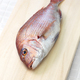 Madai, Japanese red sea bream - PhotoDune Item for Sale