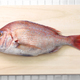 japanese red sea bream, Tai, Madai snapper - PhotoDune Item for Sale