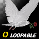 White Dove with Red Rose - Flying Loop - Back Angle - VideoHive Item for Sale