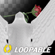 White Dove with Red Rose - Flying Loop - Back View - VideoHive Item for Sale