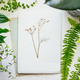 Herbarium and plants - PhotoDune Item for Sale