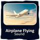 Airplane Flying Over Sound