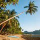 Golden sunset light on tropical beach. Bangka boat on shore under palm tree. El Nido bay. Palawan - PhotoDune Item for Sale