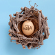Egg with inscription EASTER in a nest over light blue background - PhotoDune Item for Sale