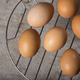 Group of fresh chicken eggs - PhotoDune Item for Sale