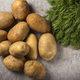 Group of new potatoes - PhotoDune Item for Sale