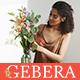 Gerbera - Florist Boutique & Decoration Store Shopify Theme