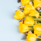 Easter composition quail eggs and yellow tulips .Happy Easter - PhotoDune Item for Sale