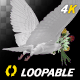 Dove with Bouquet - 4K Flying Cycle - Back Angle - VideoHive Item for Sale