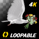 Dove with Bouquet - 4K Flying Cycle - Side View - VideoHive Item for Sale