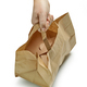 paper bag in human hand - PhotoDune Item for Sale