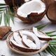 Sliced coconut and palm leaves - PhotoDune Item for Sale