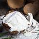 Coconut dessert with ice cream - PhotoDune Item for Sale
