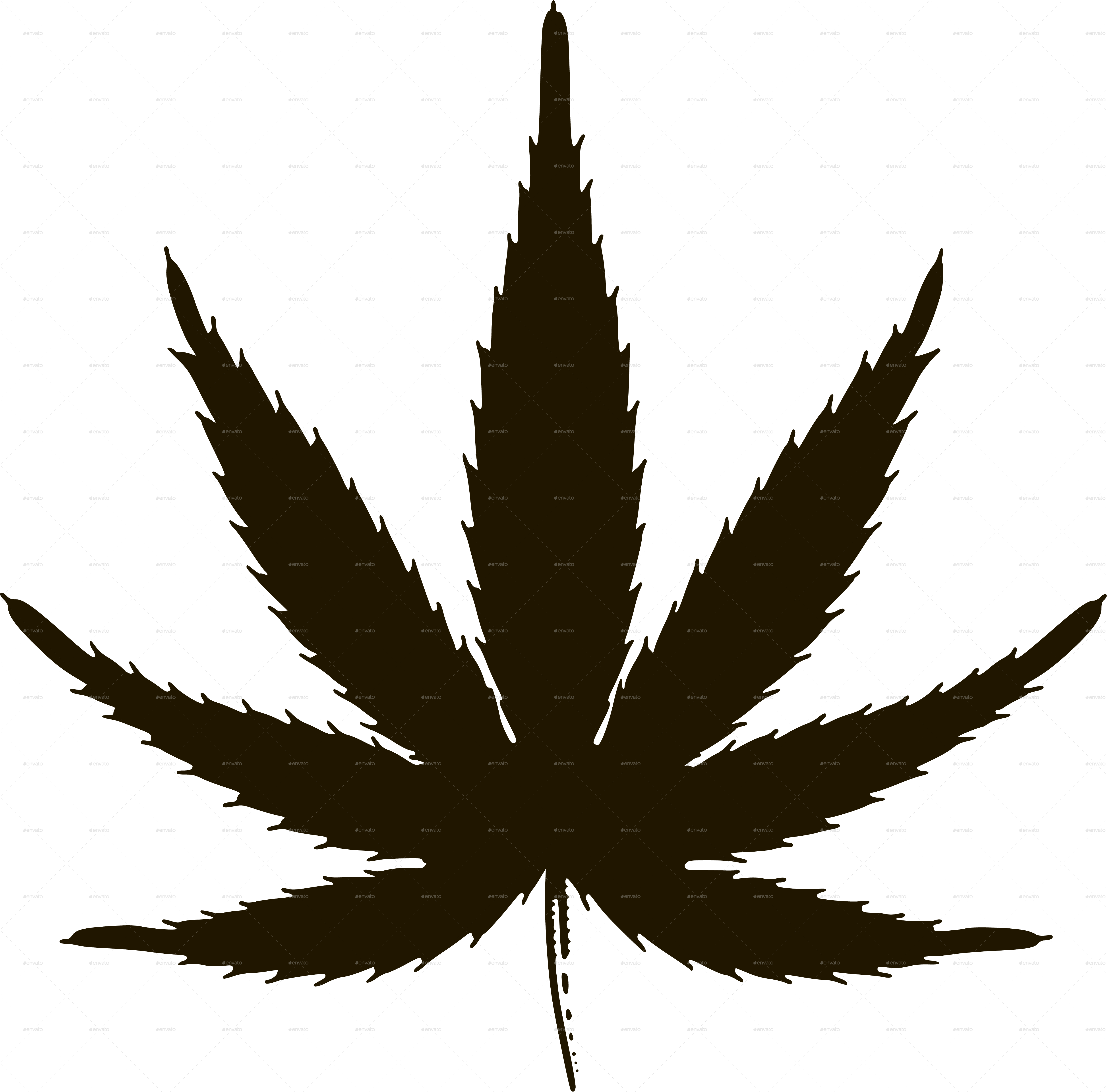 Marijuana Leaves By Roktiv Graphicriver