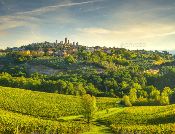 San Gimignano panoramic medieval town towers skyline and vineyards. Tuscany, Italy - Stock Photo - Images