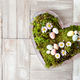 Heart with fresh daisies - PhotoDune Item for Sale