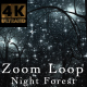 Night Forest V3 Zoom - VideoHive Item for Sale
