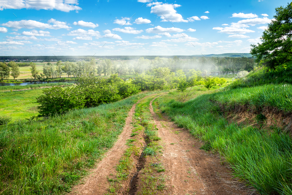 Country road in the field - Stock Photo - Images