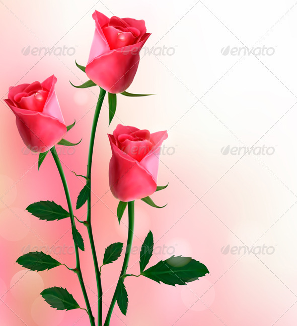 Holiday background with beautiful red roses  - Flowers & Plants Nature