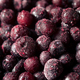 Refreshing Organic Frozen Blueberries - PhotoDune Item for Sale