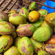 Bunch of fresh green Coconuts in a market in India - PhotoDune Item for Sale