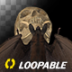 Bat with Skull - Flying Loop - Top View - VideoHive Item for Sale