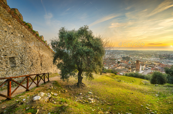 Pietrasanta aerial view from Rocca di Sala fortress at sunset, Versilia Lucca Tuscany Italy - Stock Photo - Images
