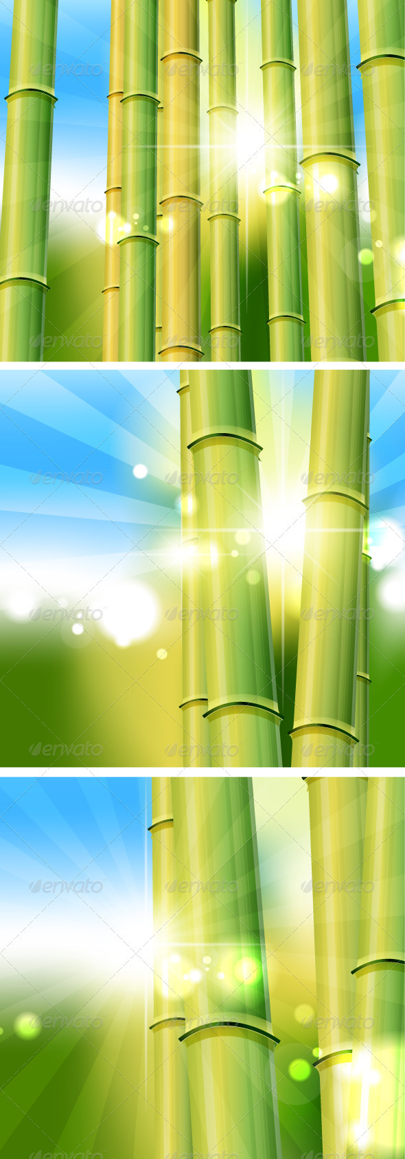 Bamboo Sunny Scenery - Flowers & Plants Nature