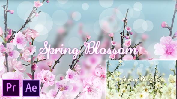 Spring Blossom – Premiere Pro